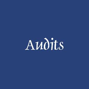 tools, advies en ondersteuning voor jou als onderwijs professional - Audits